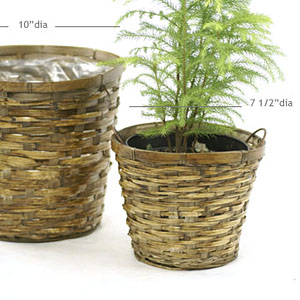 "6"" BAMBOO STAIN POT COVER"