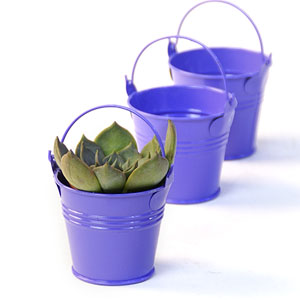 "2.5"" Mini Tin Favor Pail Purpl"