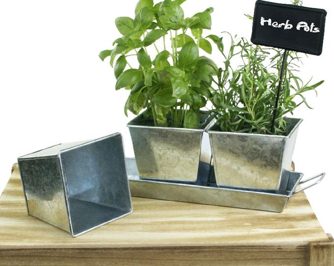 Trio Galvanized Herb Pot Basket Wholesalers