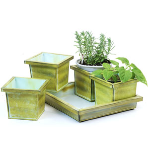 5pc Tin Herb Pot Vintage Green