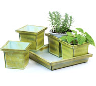 5pc Tin Herb Pot Vi...